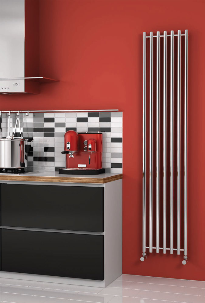 Reina Broni Stainless Steel Radiator - Polished Large Image