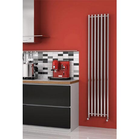 Reina Broni Stainless Steel Radiator - Polished