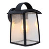 Revive Outdoor Matt Black Wall Light with Seeded Glass Diffuser profile small image view 1