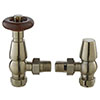 Hudson Reed Camden Satin Nickel Angled Thermostatic Valve - RV203 profile small image view 1