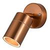 Revive Outdoor Copper Adjustable Wall Spotlight profile small image view 1