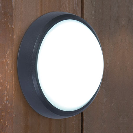 Revive Outdoor Round Black LED Wall & Ceiling Light