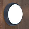 Revive Outdoor Round Black LED Wall & Ceiling Light profile small image view 1
