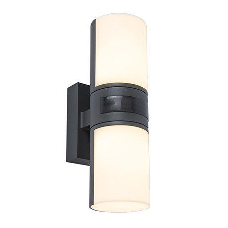Revive Outdoor PIR Rotatable Tubular Dark Grey Wall Light