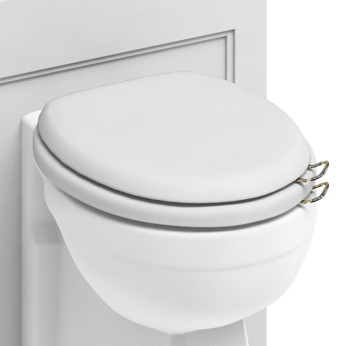Burlington Soft Close Toilet Seat with Chrome Hinges and Handles - Matt White Profile Large Image