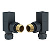 Square Anthracite Angled Radiator Valves Small Image