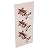 Heritage Dawlish Recessed Shower Valve with Twin Stopcocks - Rose Gold profile small image view 1