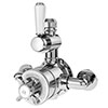 Asquiths Restore Twin Exposed Shower Valve - SHE5318 profile small image view 1