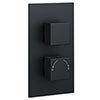 Arezzo Square Modern Concealed Twin Shower Valve - Matt Black profile small image view 1