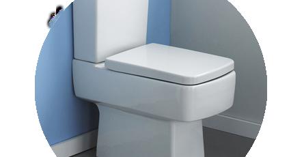 Square Toilet Seat in situ