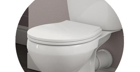 Standard Toilet Seats