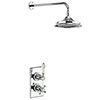 Burlington Medici Trent Thermostatic Concealed Single Outlet Shower Valve with Fixed Head profile small image view 1
