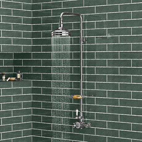 Trafalgar Traditional Shower Inc. Rigid Riser, Fixed Head & Soap Basket