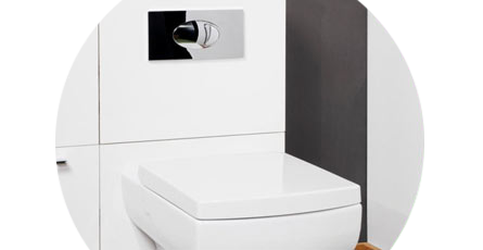 Toilet unit with toilet flush button