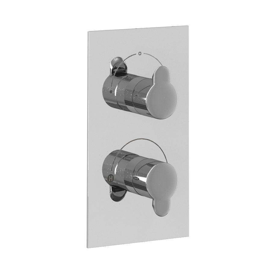 Britton Bathrooms - Concealed Twin Thermostatic Valve with Square Fixed Head and Slider Kit Profile Large Image