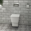 Valencia Wall Hung Toilet with Soft Close Seat (inc. Chrome Flush + Concealed Cistern Frame) profile small image view 1