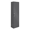 Apollo2 400mm Gloss Grey Tall Wall Hung Unit profile small image view 1