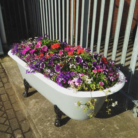 Victorian Plumbing to Sponsor Southport Flower Show 2016
